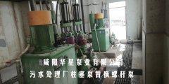 污水处理厂柱塞泵替换螺杆泵